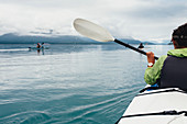 Group of sea kayakers paddling pristine waters of an inlet on the Alaska coastline.