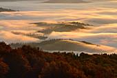 Ukraine, Zakarpattia region, Carpathians, Borzhava, Morning fog over mountain landscape