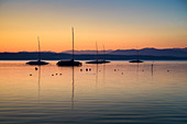 Boats in the backlight, at sunrise on Lake Starnberg, Tutzing, Bavaria, Germany
