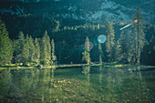 Atmospheric mountain lake (Gosaulacke) with conifers on the shore.