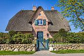 Thatched-roof house in Morsum, Sylt, Schleswig-Holstein, Germany