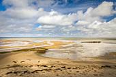 Mudflat landscape near Keitum, Sylt, Schleswig-Holstein, Germany