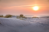 Sunrise in the dunes of the Ellenbogen nature reserve, Sylt, Schleswig-Holstein, Germany
