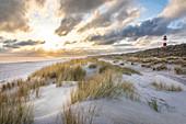 List-Ost lighthouse in the dunes on the Ellenbogen Peninsula, Sylt, Schleswig-Holstein, Germany