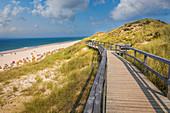 Boardwalk in the dunes near Wenningstedt, Sylt, Schleswig-Holstein, Germany