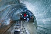 Schellenberger ice cave, Untersberg massif, Berchtesgadener Land, Upper Bavaria, Alps, Europe
