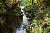 Wildbach Ramsauer Ache, Ramsau, Berchtesgadener Land, Upper Bavaria, Germany