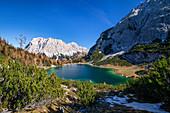 Seebensee with Zugspitze and Wetterstein Mountains, Alps, Tyrol, Austria