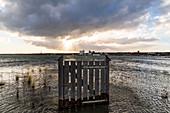 Gate standing in the Baltic Sea water in Heiligenhafen, Baltic Sea, Ostholstein, Schleswig-Holstein, Germany
