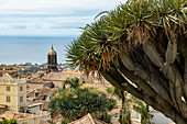 "View from the historic city center in the place ""La Orotava"", Tenerife, Spain"