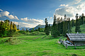 Traditional alpine building stands on hilly meadow, on the Ristfeuchthorn, Chiemgau Alps, Chiemgau, Upper Bavaria, Bavaria, Germany