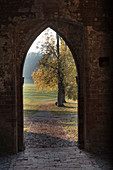 Archway in the Chorin monastery, autumn impressions