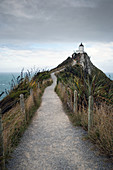 Nugget Point in the Catlins, a region in the Otago district of New Zealand.