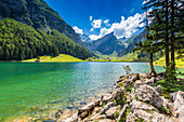 Sunny day at Seealpsee, Canton of Appenzell, Alpstein, Switzerland, Europe