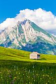 Alte Hütte mit Altmann-Berg im Hintergrund, Alt St. Johann, Toggenburg, Kanton St. Gallen, Schweiz, Europa