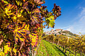 The village of La Morra from the vineyards in autumn. Barolo wine region, Langhe, Piedmont, Italy, Europe.