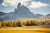 Italy,Veneto,Belluno district,Cortina d'Ampezzo,high mountain pasture areas with Becco di Mezzodì in the background
