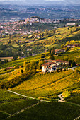 Langhe hills with foliage and view of Castagnole delle Lanze from Valdivilla, Santo Stefano Belbo, Piedmont, Italy