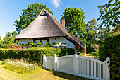 Thatched roof in Siggeneben, Ostholstein, Schleswig-Holstein, Germany