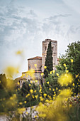 The abbey of Sant'Antimo during spring season, Castelnuovo dell'Abate, Grosseto, Tuscany, Italy, Europe