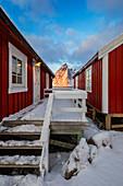 View of Rorbuer at sunrise, Hamnoy, Moskenes, Moskenesoya, Nordland, Lofoten, Norway, Northern Europe