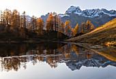 Autumnal reflections of the Monte Cervandone on the Lago Superiore del Sangiatto. Alpe Devero, Antigorio valley, Piedmont, Italy.