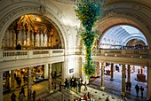 England, London, South Kensington, The Victoria and Albert Museum, main entrance, elevated view, glass sculpture by Dale Chihuly