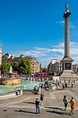 United Kingdom, London, Saint James's Quarter, Nelson's Column on Trafalgar square