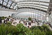 United Kingdom, London, City, Walkie Talkie tower, on the 35th floor, the Sky Garden bar and restaurant