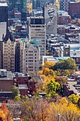 AUTUMN COLORS IN MONT-ROYAL PARK AND VIEW OF THE BUSINESS DISTRICT, MURAL OF LEONARD COHEN, CITY OF MONTREAL, QUEBEC, CANADA