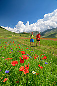 Man and woman hiking through flowering poppy field with Castelluccio in the background, Castelluccio, Sibillini Mountains, Monti Sibillini, National Park Monti Sibillini, Parco nazionale dei Monti Sibillini, Apennines, Marche, Umbria, Italy