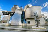 Guggenheim Museum, architect Frank O. Gehry, Bilbao, Basque Country, Spain