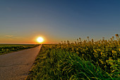 Sunset at the end of a road, Baltic Sea, Ostholstein, Schleswig-Holstein, Germany