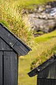 Detail eines historischen Hauses mit grasbewachsenem Dach, Dorf Saksun, Insel Streymoy auf den Färöer Inseln