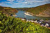 Der Rhein mit Blick auf Oberwesel, Rheinland-Pfalz, Deutschland