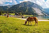 Vilsalpsee in Allgäuer Alpen, Tirol, Österreich