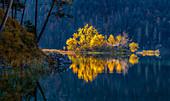 Herbstliche Eibseeinsel, Grainau, Bayern, Deutschland