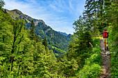 Auf dem Weg zum Hasentalkopf, Linderhof, Bayern, Deutschland
