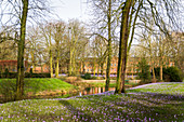 Krokusblüte im Schlosspark Husum, Nordfriesland, Schleswig-Holstein, Deutschland
