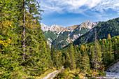 Abstieg vom Kleinen Ahornboden mit Blick auf die herbstliche Falkengruppe, Hinterriß, Tirol, Österreich
