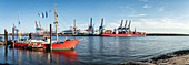 Museum harbor Övelgönne, Elbe river and Hamburg harbor, container terminal, panorama, Hanseatic city of Hamburg, Germany, Europe