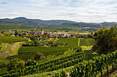 Wine-growing village and vineyards, Burkheim, Vogtsburg, Kaiserstuhl, Baden-Württemberg, Germany
