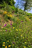 Kräutergarten in Berglandschaft, Selbstgemachtes mit Kräutern aus dem eigenen Garten
