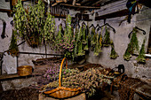 Herbs drying, homemade with herbs from your own garden
