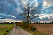 Landscape near Herzberg (Elster), Elbe Elster district, State of Brandenburg, Germany