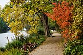 New journey of the Havel, Friendship Island, Potsdam, State of Brandenburg, Germany