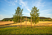 Place of worship in the wine paradise near Bullenheim, Neustadt an der Aisch, Middle Franconia, Franconia, Bavaria, Germany, Europe