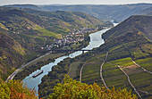 View from Calmont on the Moselle at Ediger-Eller, Calmont, Rhineland-Palatinate, Germany, Europe