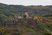 Metternich Castle in Beilstein on the Moselle, Rhineland-Palatinate, Germany, Europe