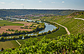 The Neckar near Mundelsheim, Kraichgau, Baden-Wuerttemberg, Germany, Europe